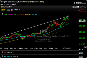 ibb13 300x199 Stock and Sector Overview